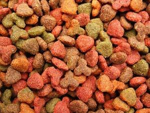 Alimentos para Animais